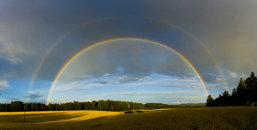 over the rainmbow